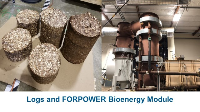 Fuel logs and the FORPOWER Bioenergy Module